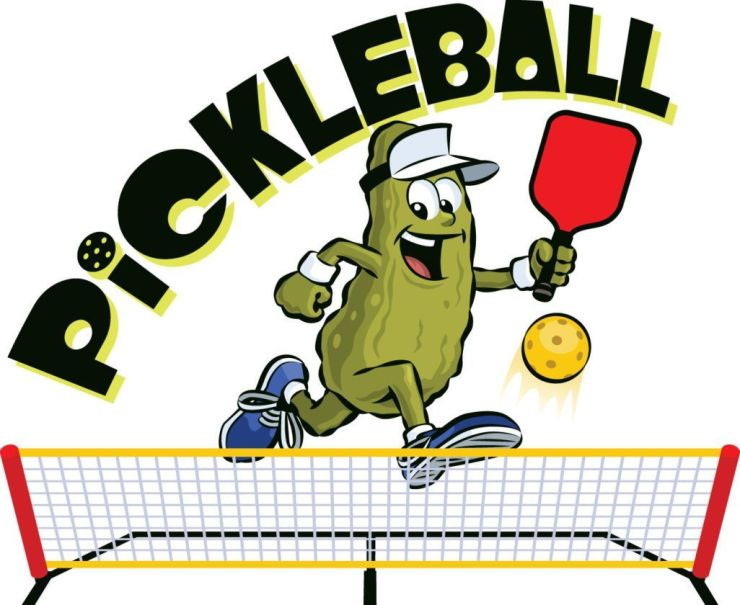 Stupid Graphic for pickleball